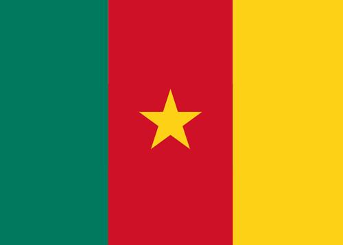 waf cameroon flag